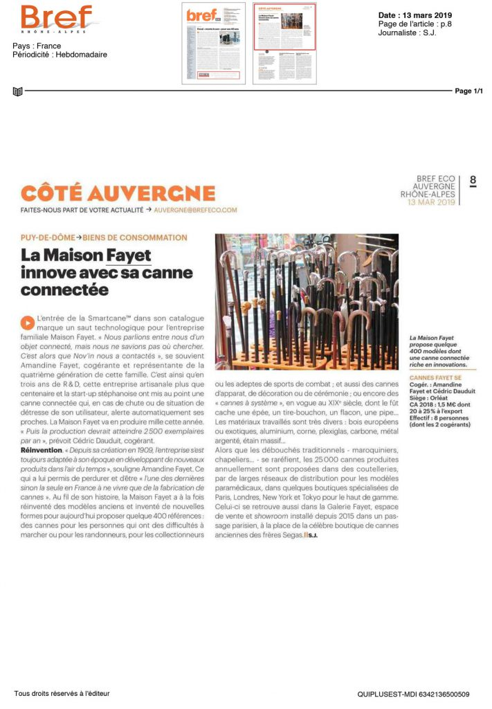 Article Bref Smartcane 2019